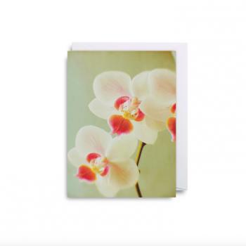 Mini kartīte Orhideja
