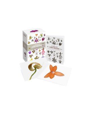 Kartīšu komplekts Box of orchids, 100 kartītes