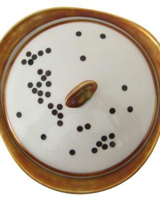 Uzlīmes porcelānam Punktiņi